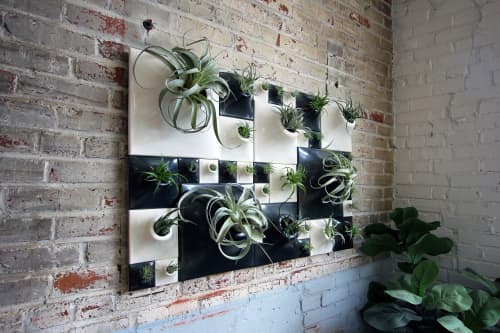 Ceramic wall planter living wall with airplants   Vases & Vessels by Pandemic Design Studio