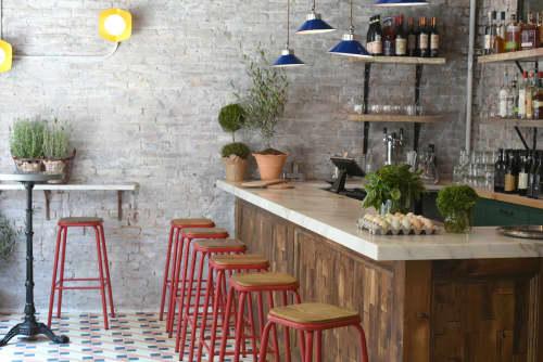 Naples Coral Tile | Tiles by Dekar Design | Roey's in New York