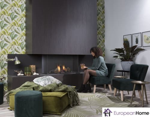 Fireplaces by European Home seen at Middleton, Middleton - Summum Series Gas Fireplace
