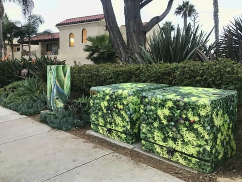 Discrete Landscape Patterns   Public Mosaics by Utlity Box Wraps by Lee Sie   Casa de Mañana Retirement Community in San Diego