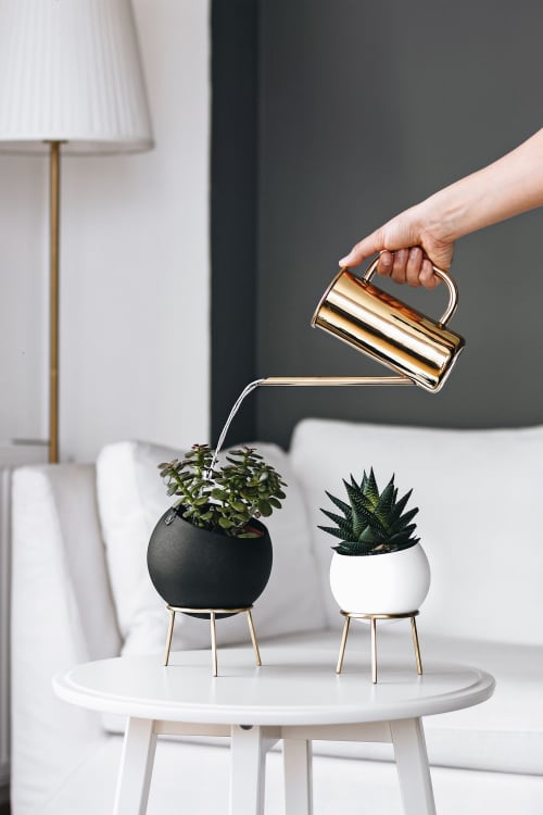 Vases & Vessels by Kitbox Design seen at Private Residence - Globe Planter Mini & Midi
