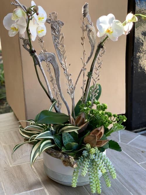 Pure white Orchid arrangement | Floral Arrangements by Fleurina Designs