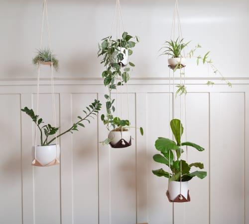 Plants & Flowers by Keyaiira   leather + fiber seen at Private Residence, Santa Rosa - Dual Leather Plant Hammock