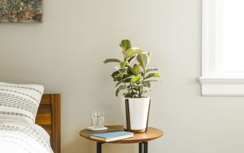 Base Planter | Furniture by Fire Road | Bayview in San Francisco