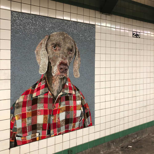 Public Mosaics by William Wegman at 23rd Street, New York - Dog Man Mosaic