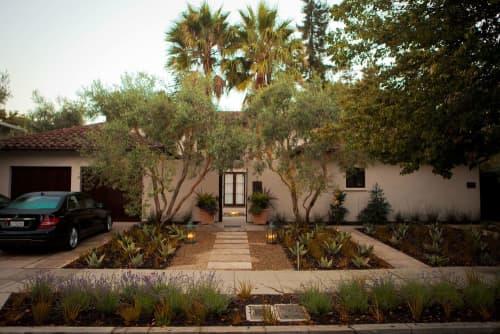 Plants & Landscape by Zeterre Landscape Architecture seen at Private Residence, Palo Alto - Villa Bougainvillea - Palo Alto