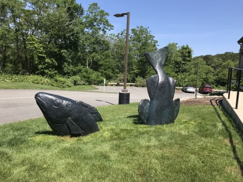 Head and Tail of the Cod   Public Sculptures by Hilary Hutchison   Cahoon Museum of American Art in Barnstable