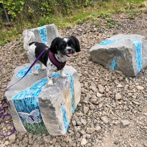 Public Mosaics by JK Mosaic, LLC - Tigard Outdoor Museum Trail Boulders