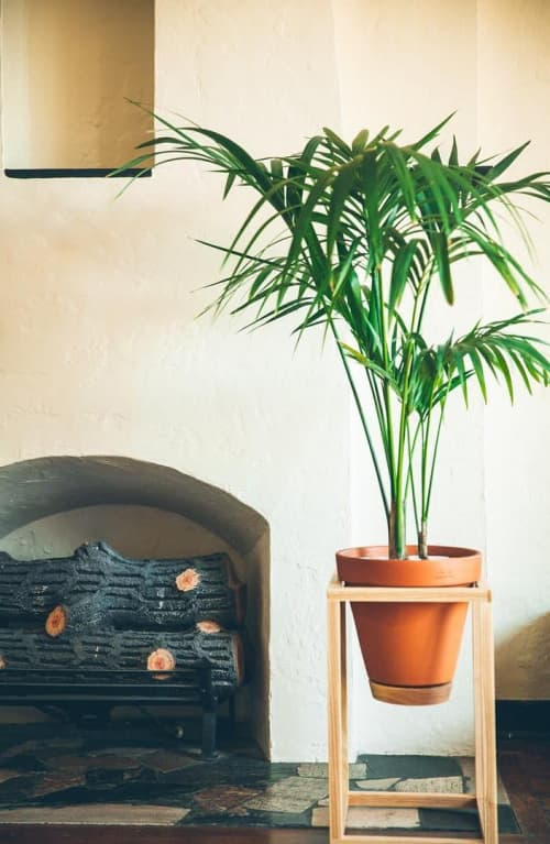 Frame Planter | Furniture by Trey Jones Studio