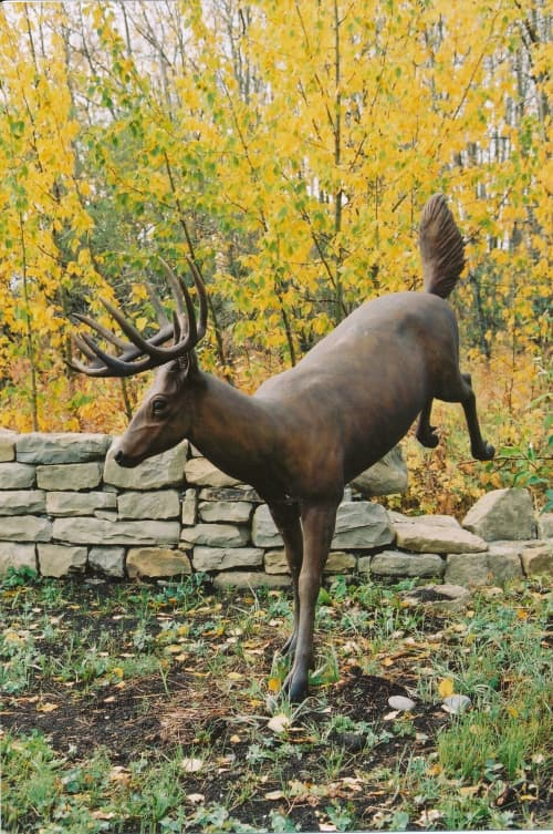 Jumping Whitetail Deer   Public Sculptures by Don Begg / Studio West Bronze Foundry & Art Gallery