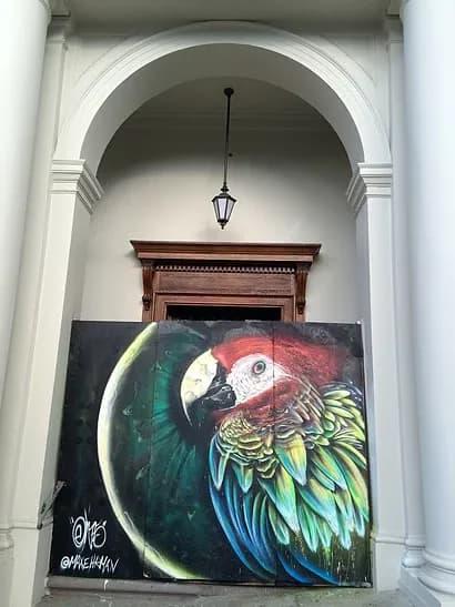 Murals by Max Ehrman (Eon75) seen at Mission Dolores Park, San Francisco - Parrot of Dolores