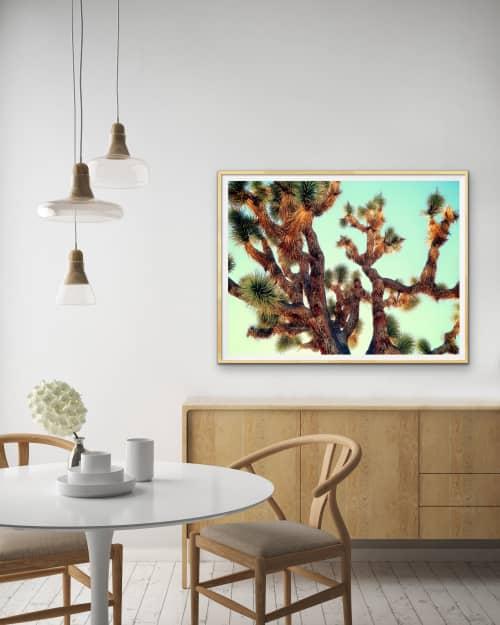 Photography by Kristin Hart Studios - JOSHUA TREE - ABSTRACT