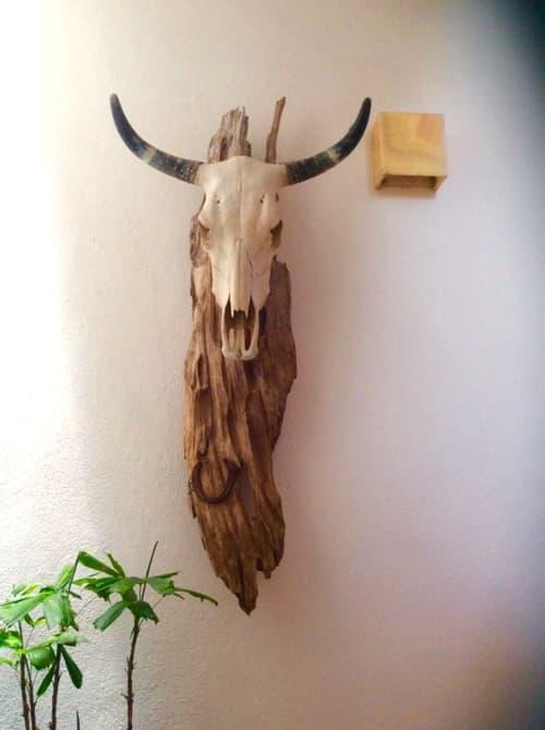 Toro (Wall Sculpture)   Wall Hangings by Jane Maroni Organic Design   Hotel Cielo Rojo in San Francisco