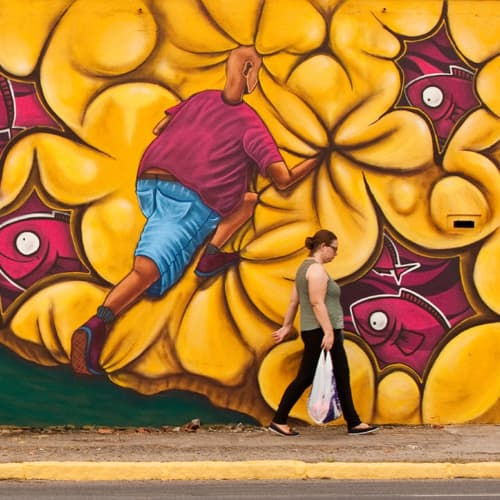Street Murals by Jonca seen at Private Residence - Experience
