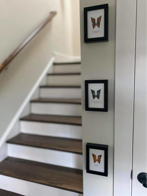 Paintings by Lene Bladbjerg seen at Private Residence, Washington - Butterflies handpainted on actual stanley knife blades