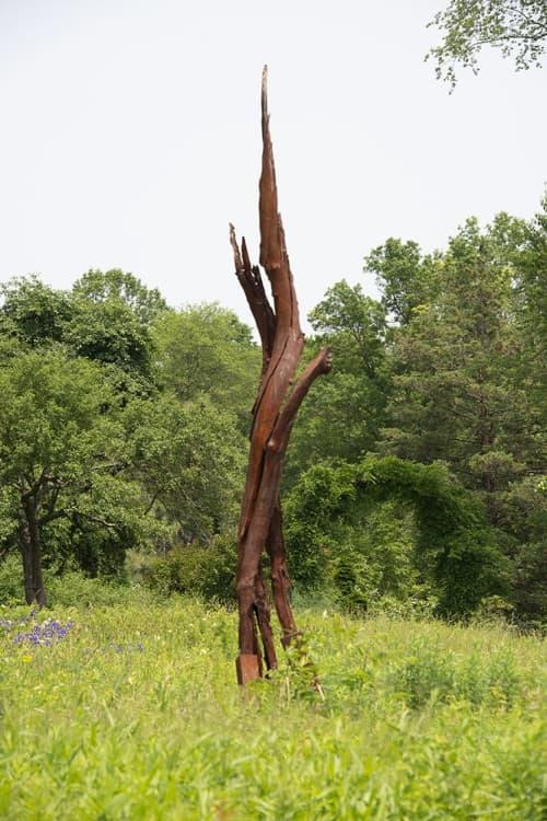 "Cherry Tree Strike   39°36'24.3""N  76°42'54.4""W / Lightning Strike Series | Public Sculptures by John Ruppert | Ladew Topiary Gardens in Monkton"