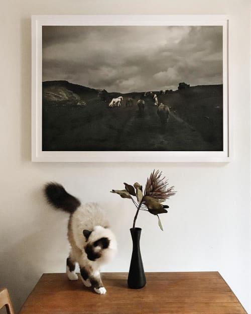 Photography   Photography by Susanne Walström