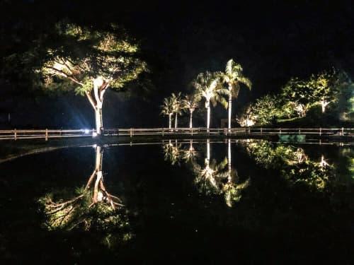 Lighting by Rouzana K Kopti seen at Al-Yasmine Guest House - Landscape Lighting Design