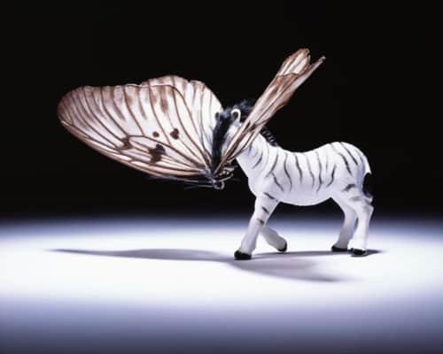 Abby Goodman - Sculptures and Art