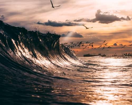 Matthew Clark - Photography and Art