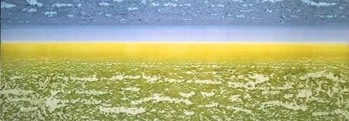 Robin Denevan - Paintings and Art