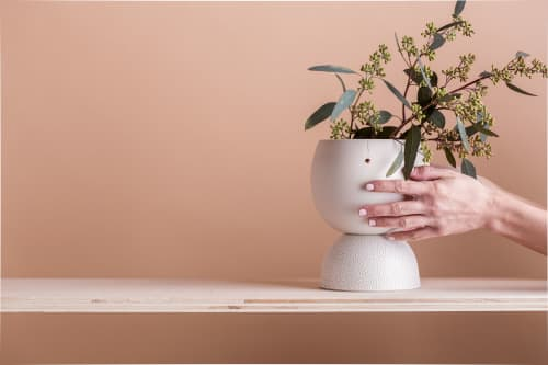 MiMOKO - Planters & Vases and Plants & Flowers
