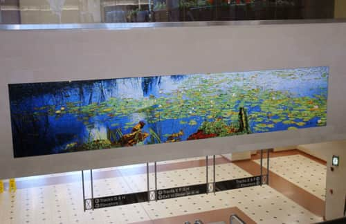 mac adams - Art and Murals