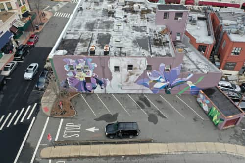 anón - Street Murals and Murals