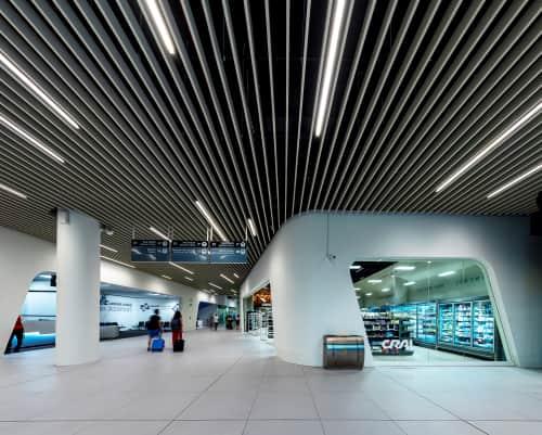 Studio Doppio - Interior Design and Renovation