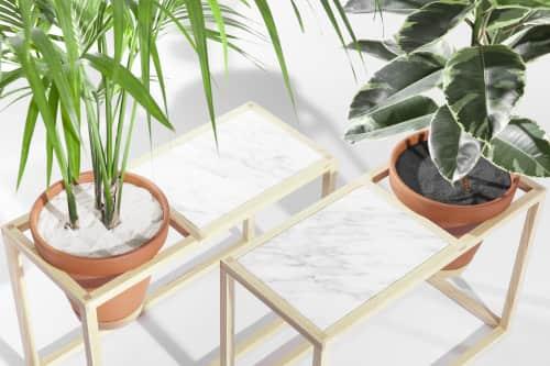 Trey Jones Studio - Furniture and Art