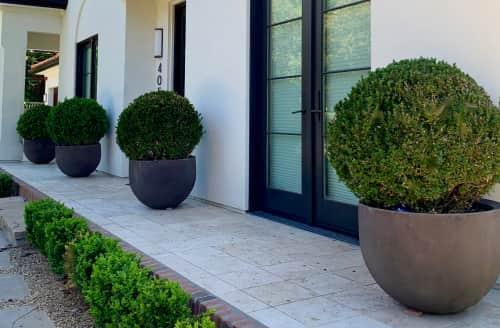 Marilee Gaffney Design - Plants & Landscape and Planters & Garden