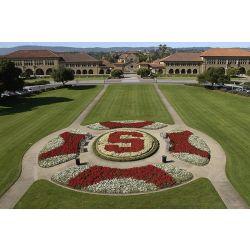 Stanford University, Student Housing