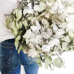 Fibers & Florals
