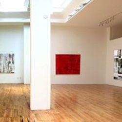 Elins Eagles-Smith Gallery