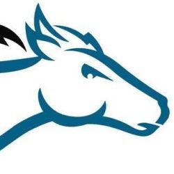 Darkhorse Lightworks, LLC