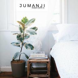 Studio Jumanji