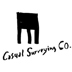 Casual Surveying Co.